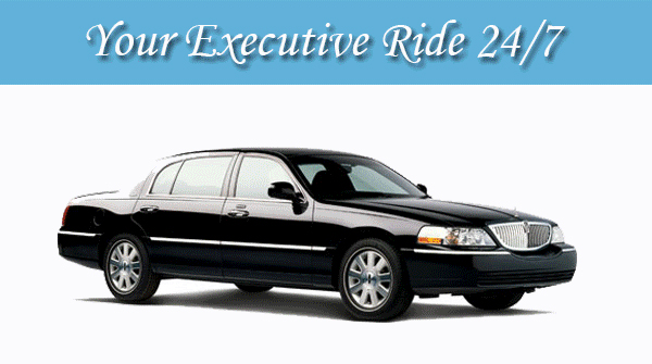 BUSINESS CLASS CAR SERVICE . MAX SIZE 4 PEOPLE .                                                                                                                          .